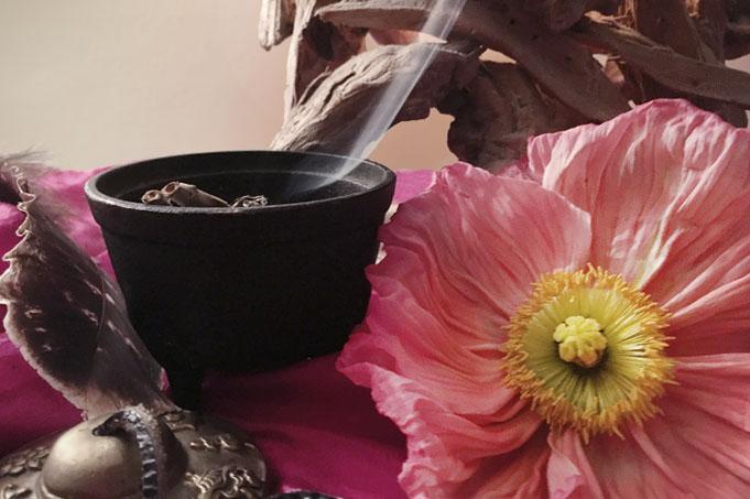 Rauchschale und Mohnblume